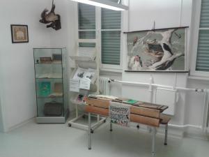 Hahner-Schulgeschichten-2016-1